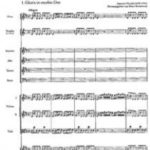 Tricentenario de la ordenación como sacerdote de Antonio Vivaldi: su obra sacra