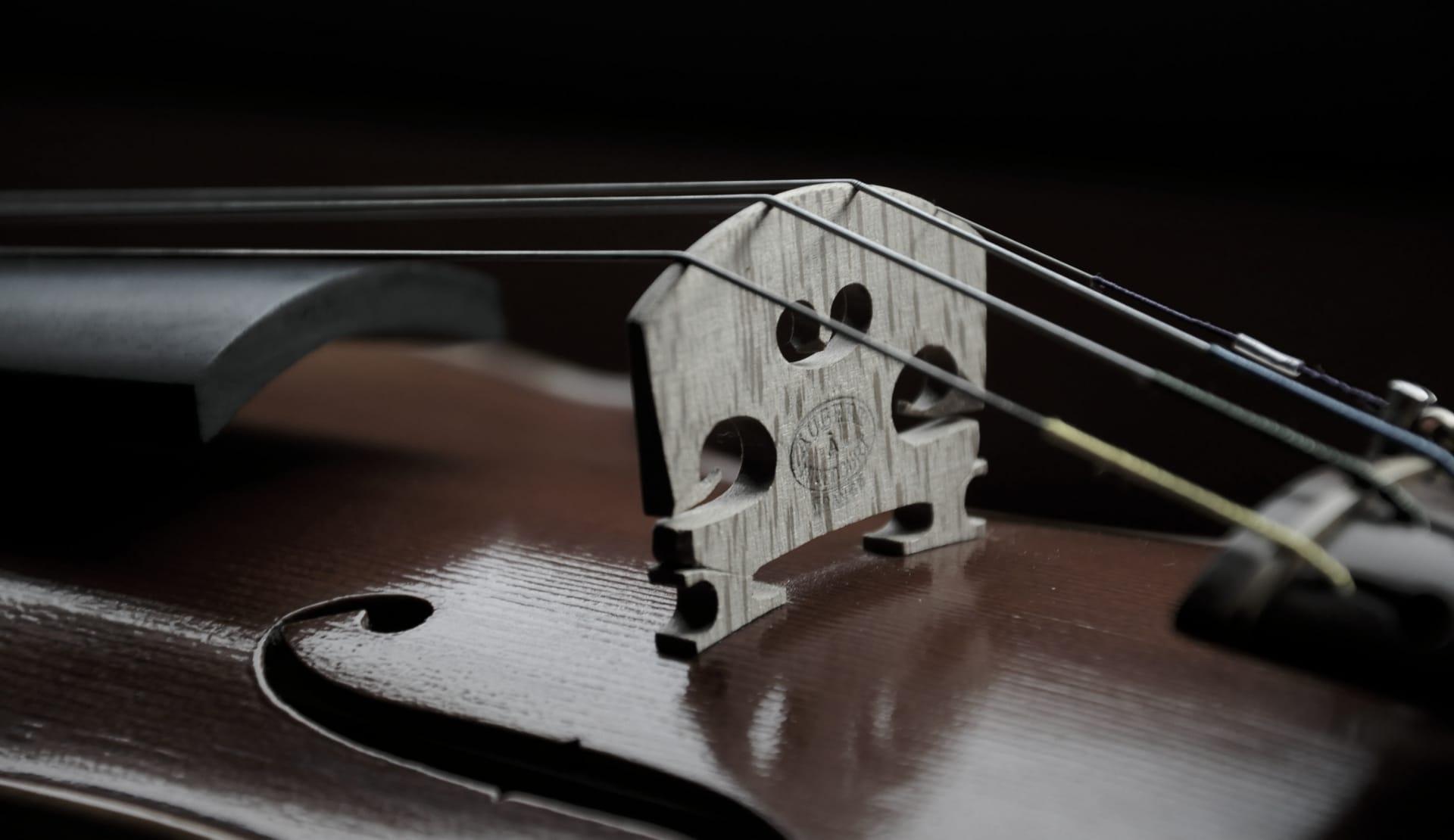 Violín, un instrumento con mucho refranero.