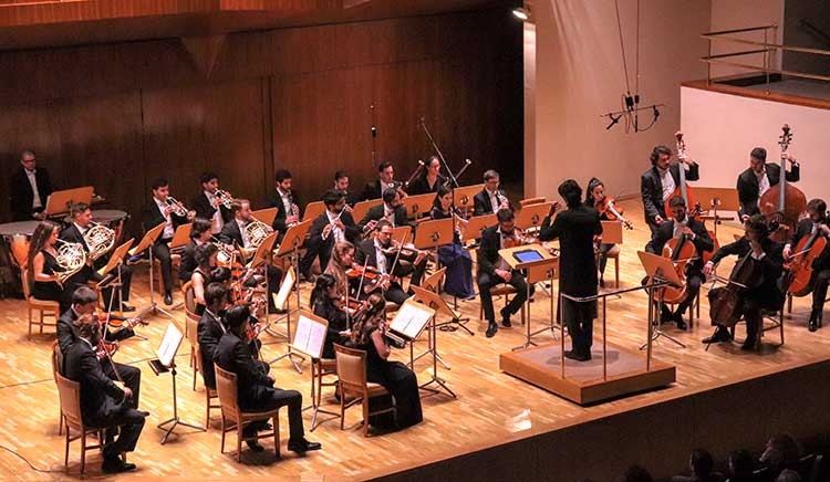 Madrid Festival Orchestra
