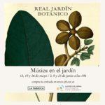La Orquesta Sinfónica de Bankia llena de música el Botánico