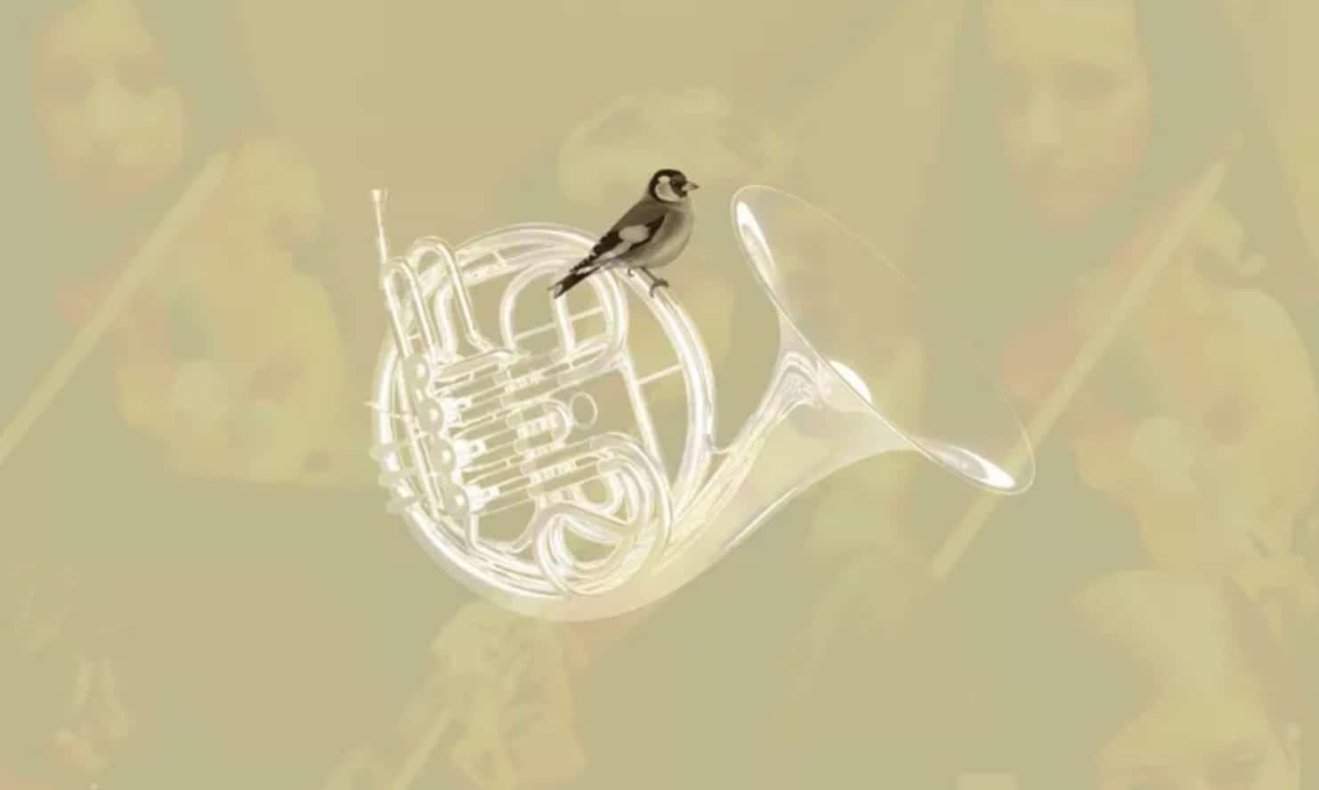 IV Concurso Bankia de Orquestas de la Comunitat Valenciana